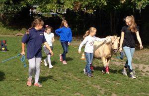 FGO Checkpoint Fun Pferdesport